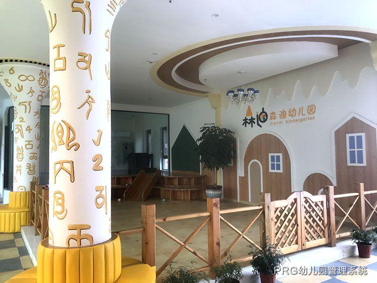 荆州森迪幼儿园 PRG数据化管理系统导入服务