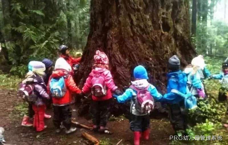 实验小学附属幼儿园的五年发展规划