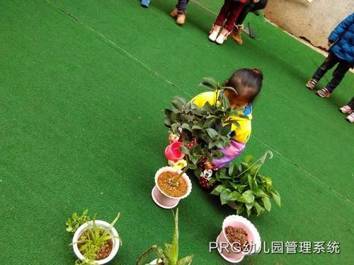 绿色自然幼儿园办园特色简介